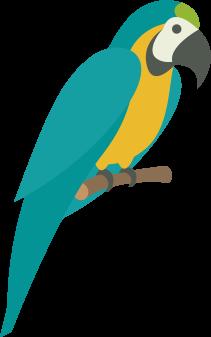 Globehopper papagaai