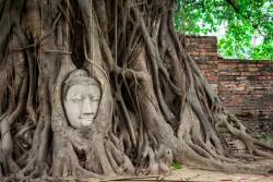 Ayutthaya Wat-Mahathat Thailand