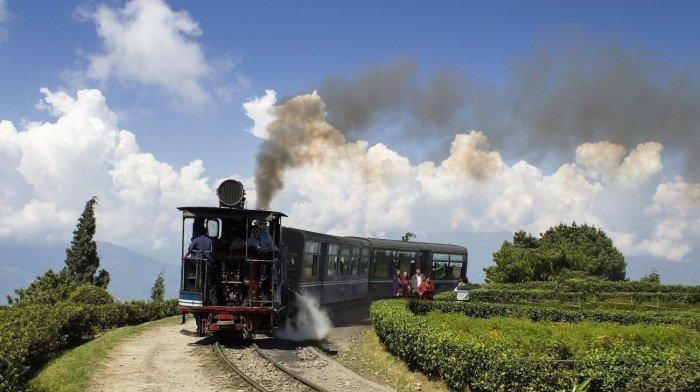 Darjeeling trein naar thee plantages