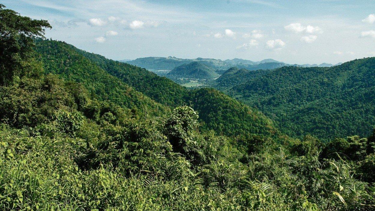 Khao Yai National Park Thailand Landschap Bergen