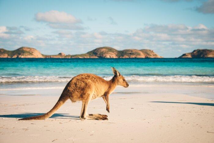 Australie tips reizen