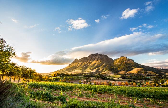 Zuid-Afrika tips reizen