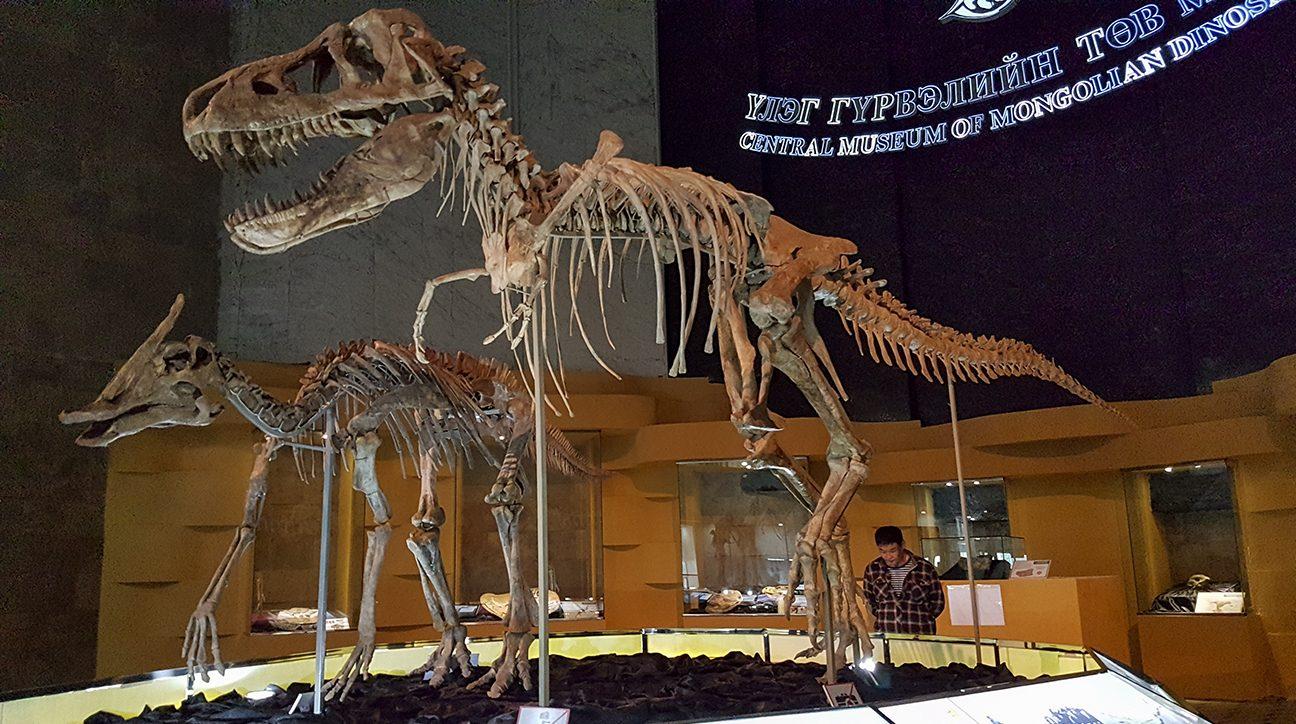 Centraal Museum van Dinosaurussen