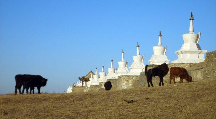 Orkhon Valley & Kharkorin Monastery