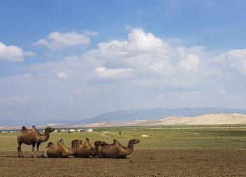 Sprookjesachtige Gobi woestijn