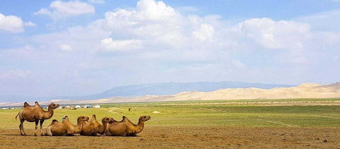 Wereldreis Blog 11 Toeren door de Gobi Woestijn in Mongolië