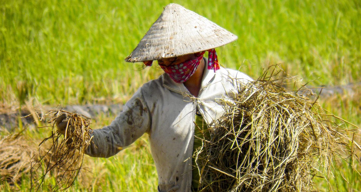 Wereldreis blog 19 Zuid Vietnam Ho Chi Minh Mekong Delta en Phu Quoc