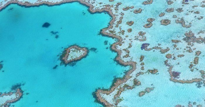 Great Barrier Reef reistips activiteiten en bezienswaardigheden