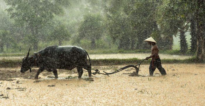 5 Bijzondere ervaringen die je moet meemaken in magisch Myanmar