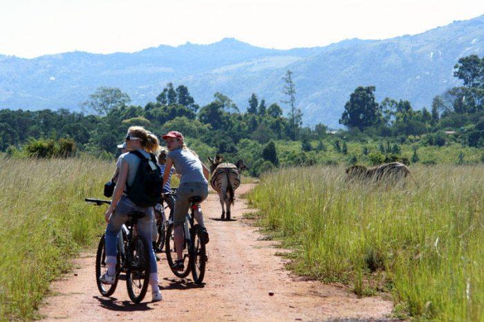Familiereis Zuid-Afrika en Swaziland - 20 dagen