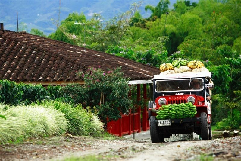 Groepsrondreis Colombia – 21 dagen - Verrassend, gastvrij en onbekend