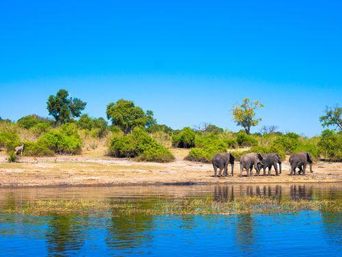 Avontuurlijke kampeersafari van Kaap tot Victoria Falls 25 dagen - Kamperen met een internationale groep in Zuid-Afrika, Namibië, Zimbabwe & Botswana