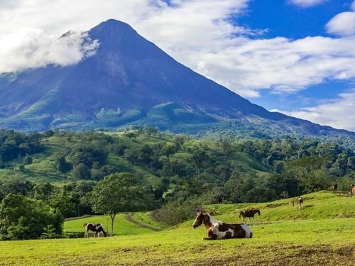 Fly-drive Costa Rica Pura Vida 17 dagen - Genieten van spannende rivieren, imposante vulkanen en populaire natuurparken