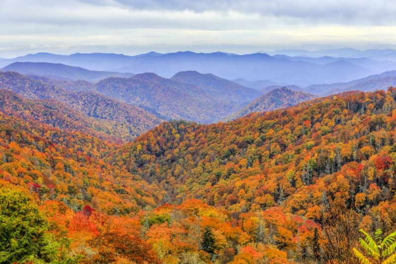 Great Smoky Mountains Nationaal Park, langs de North Carolina en Tennessee grens