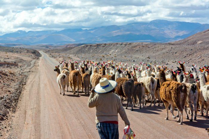 Rondreis Bolivia en Chili 21 dagen