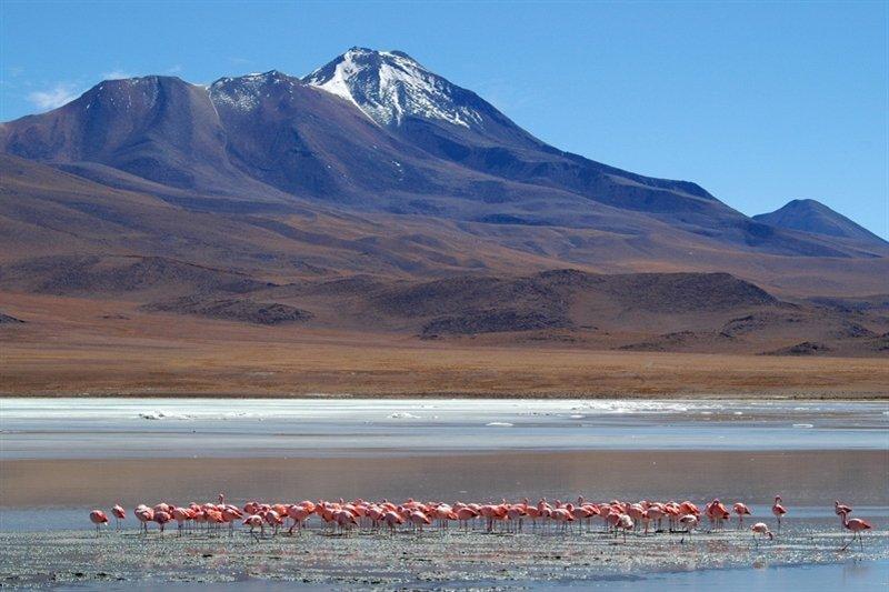 Rondreis Peru, Bolivia en Chili 30 dagen - Heel veel onvergetelijke reiservaringen, van Buenos Aires en gletsjers tot Vuurland