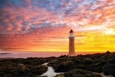 11-daagse autoreis door Zuidelijk Australië - Great Ocean Road & Kangaroo Island