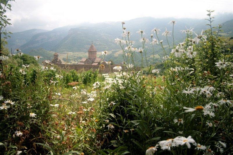 Groepsreis Georgië & Armenië 16 dagen - Waar de reiziger een gast is...