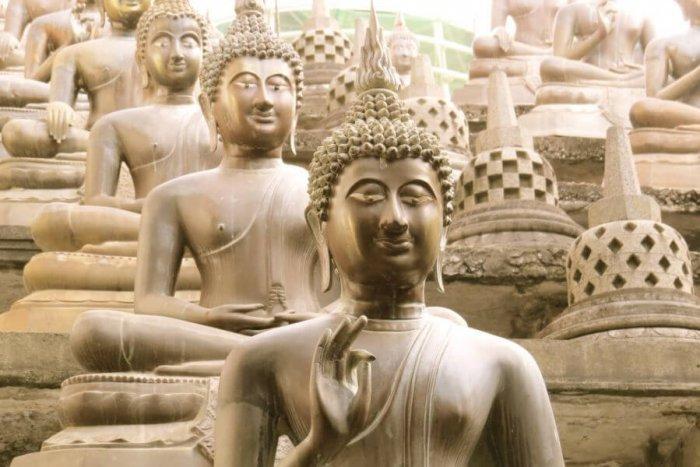 17-daagse individuele familiereis Sri Lanka