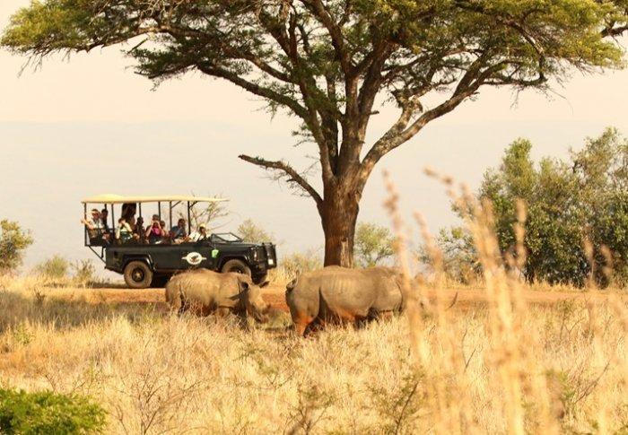 Privé rondreis met huurauto 17 dagen Zuid-Afrika