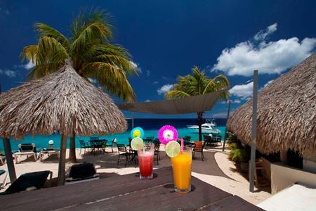 Strandvakantie Bonaire 9 dagen - Buddy Dive Resort