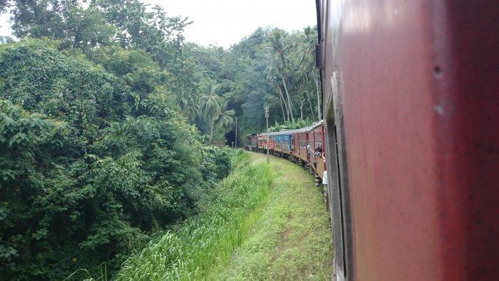 14-daagse privé rondreis Sri Lanka