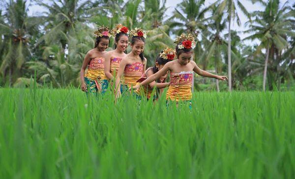 Individuele gezinsvakantie Bali 20 dagen – Indonesië - Bali voor het hele gezin!
