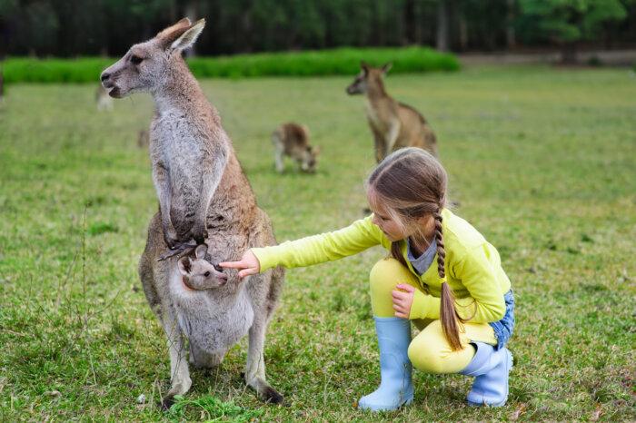 Rondreizen Australië met kinderen - Gezinsvakanties