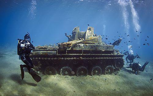 Privé duikreis Jordanië 8 dagen - Duikreis: Ontdek de onderwaterwereld