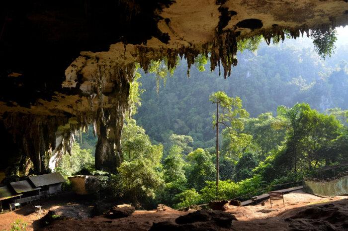 Privé rondreis Borneo 18 dagen - Maleisië