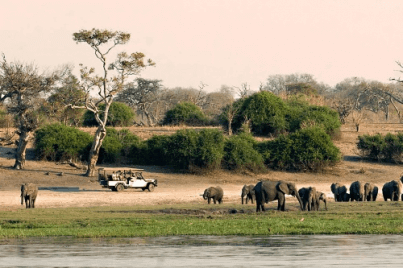 Privé rondreis Botswana en Zimbabwe 11 dagen Fly-In Safari