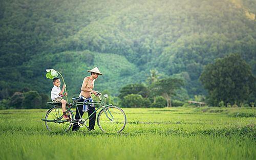 Privé rondreis Cambodja 14 dagen