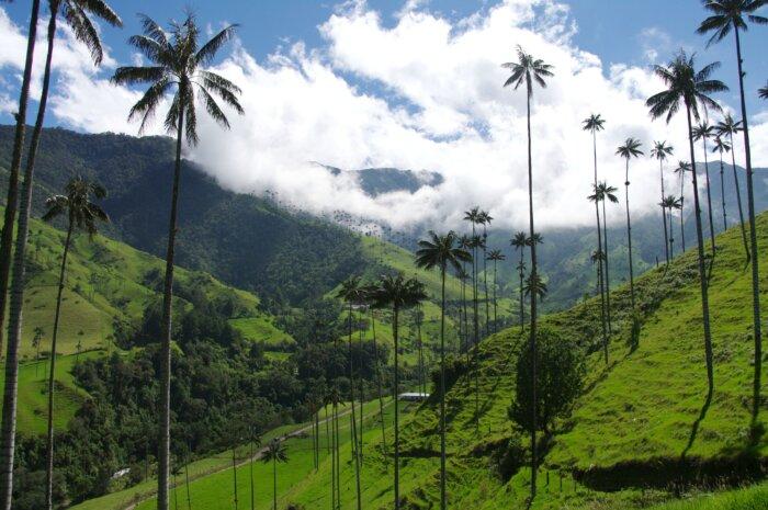 Privé rondreis Colombia 16 dagen