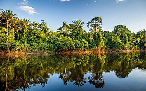 Privé rondreis Suriname 9 dagen - Een korte reis boordevol ervaringen