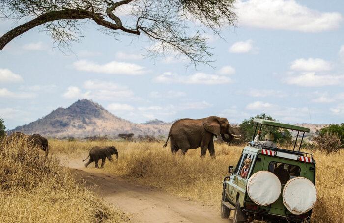 Afrika reizen rondreizen en vakanties