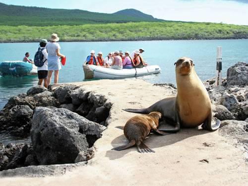 Groepsreis Ecuador 18 dagen - Fascinerend Ecuador en Galapagos eilanden