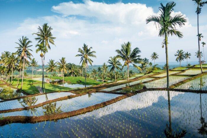 Lombok tips reizen Indonesie