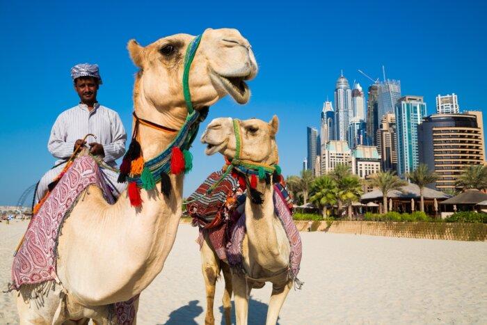 Vakantie Dubai rondreizen