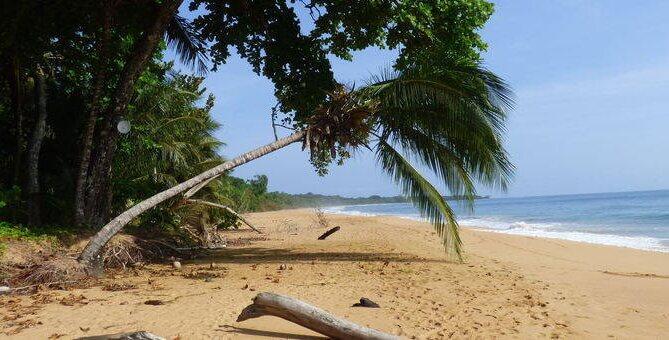 22-daagse individuele fly-drive Costa Rica en Panama - Autorondreis Costa Rica en Panama