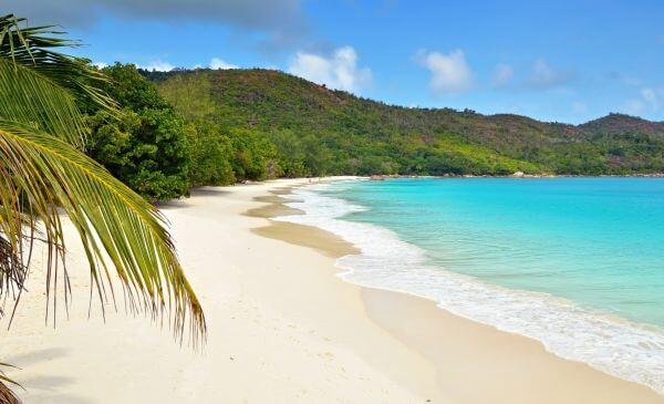 Privé rondreis 21 dagen Zuid-Afrika en Seychellen - Mooie combinatie van safari én strand