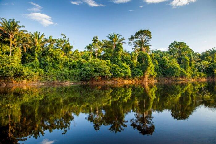 Suriname tips reizen
