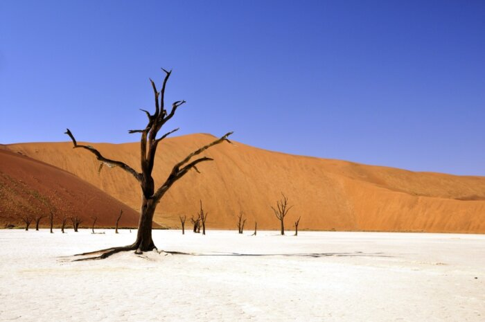 Individuele autorondreis Namibië 13 dagen