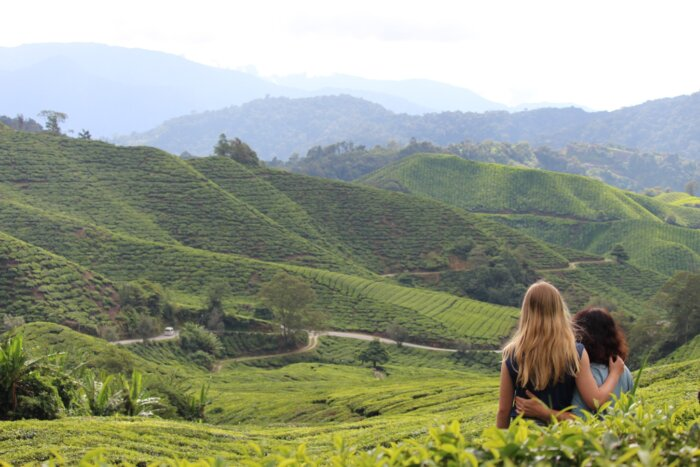 Individuele fly-drive familiereis Maleisië 20 dagen