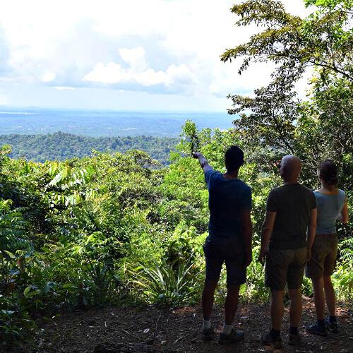 Privé rondreis Suriname 16 dagen